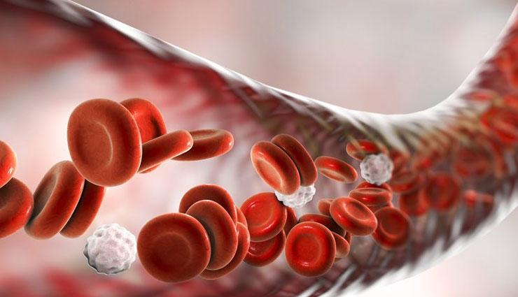 anemia,blood deficiency,blood deficiency symptoms,blood deficiency reason,increase blood in body,blood,blood in hindi,Health,health tips in hindi ,खून की कमी के समाधान,खून की कमी,शरीर में खून की कमी क्यों होती है,खून की कमी से होने वाला रोग,खून की कमी से होने वाले नुकसान,खून की कमी से क्या होता है,खून की कमी का घरेलू इलाज,खून बढ़ाने की सिरप,हेल्थ