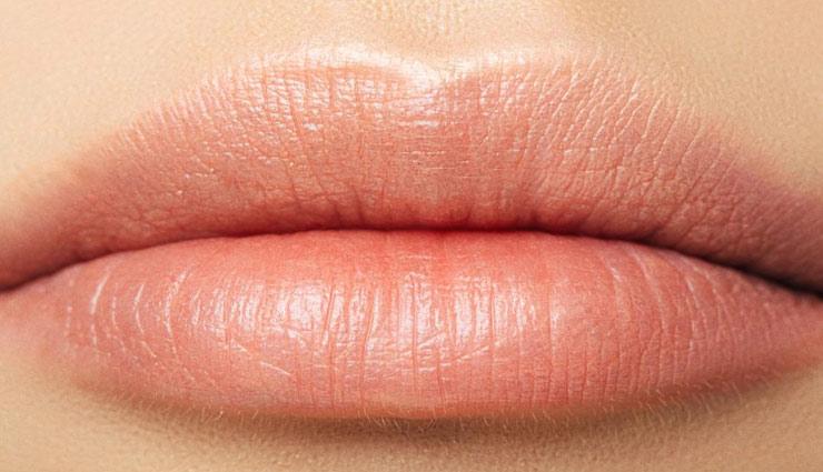 चहरे की सुन्दरता बढाते है होंठ, इन तरीकों से बरकरार रखें इनकी नमी