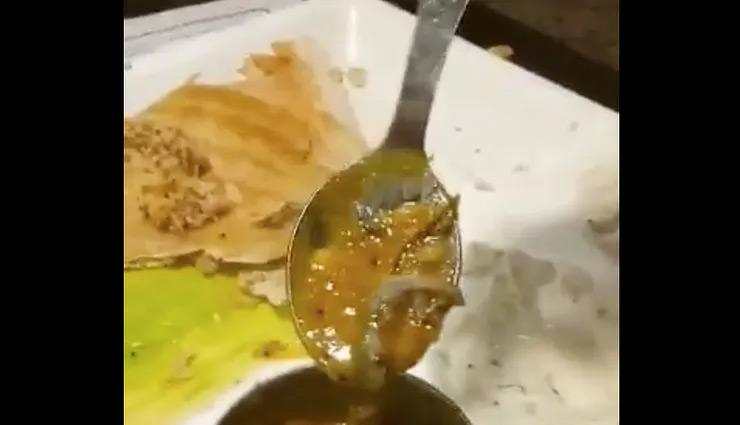 Man finds lizard inside his sambar at Delhi branch of Saravana Bhavan; FIR launched