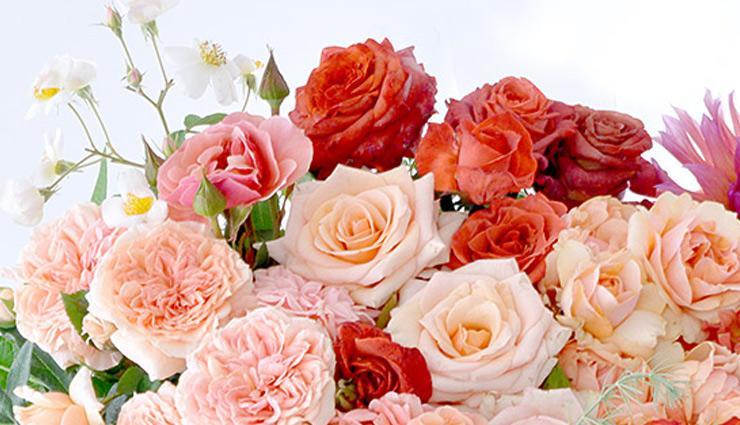 Valentine Week Special: पीला गुलाब दर्शाता है आपकी दोस्ती, जानें आपके लिए कौनसा रहेगा परफेक्ट