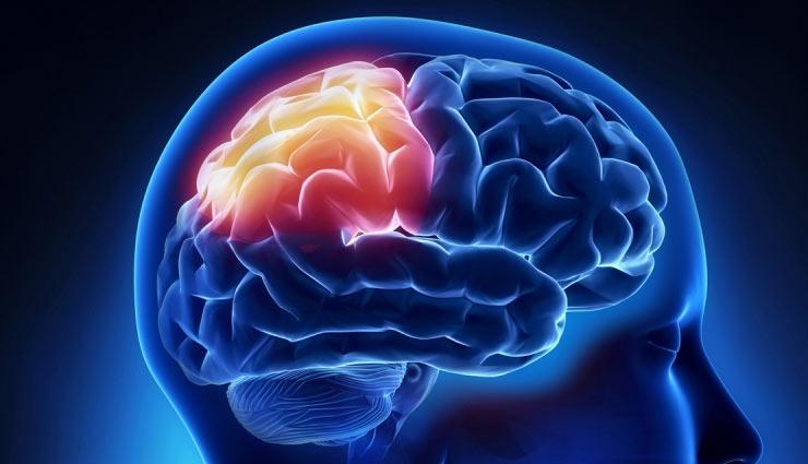 memory,memory power,food increase memory,Health,health tips in hindi ,याददाश्त, याददाश्त बढ़ने के नुस्खे, न्यूरोलॉजी, स्वास्थ्य