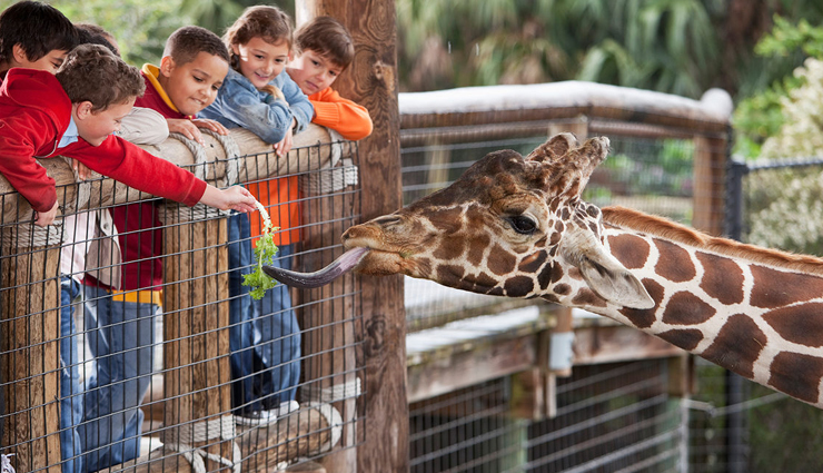 must visit zoo in the world,zoo,travel,travel guide,travel tips,holidays