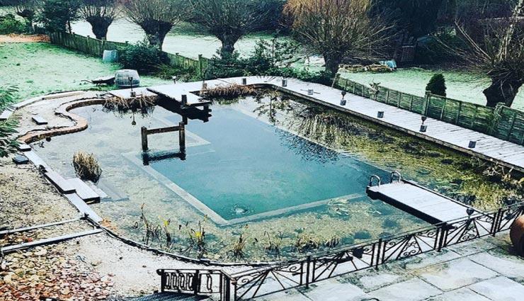 अनोखा स्विमिंग पूल जहां पौधों की जड़ों से निकलता हैं पानी, नहीं पड़ती सफाई की जरूरत