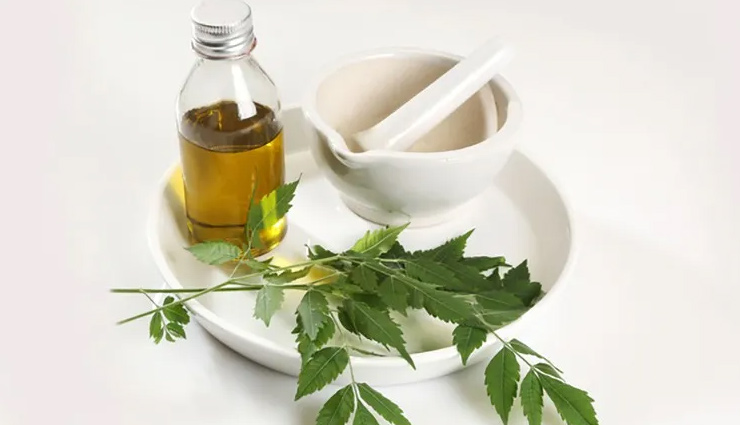 beauty benefits of neem oil,neem oil,beauty benefits,skin care tips,hair care tips,beauty tips