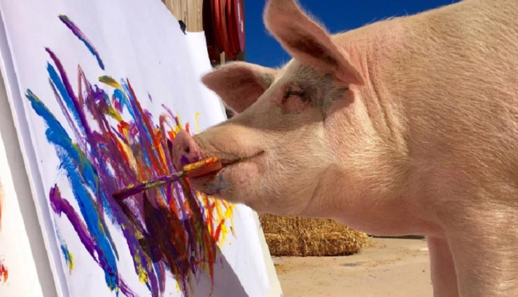 पेंटर है ये सुअर, बनाती है गजब की पेंटिंग, बिकती है लाखों में