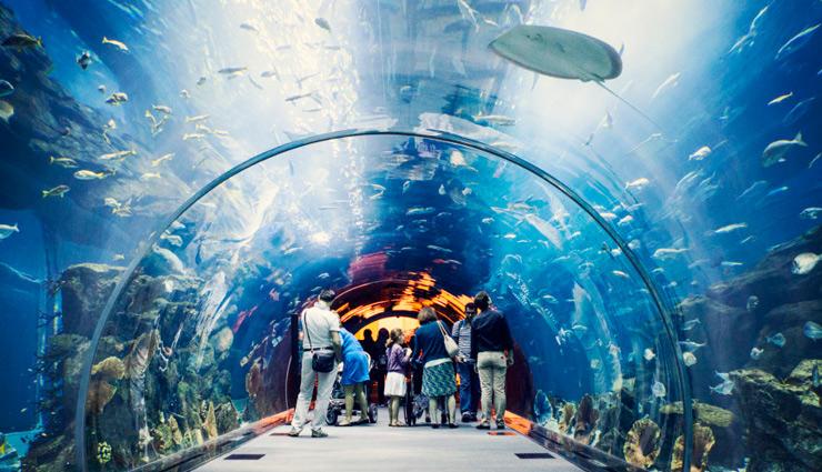 places to visit in dubai,dubai ,दुबई, दुबई के पर्यटन स्थल, पर्यटन स्थल, विदेशी पर्यटन स्थल, दुबई की बेहतरीन जगहें