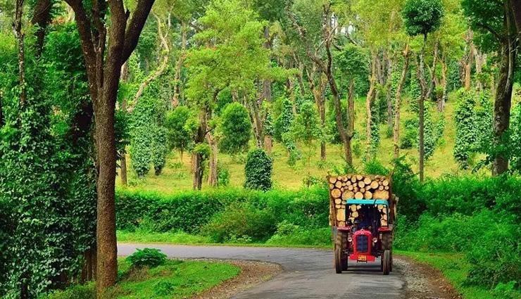 ruins of hampi,coorg,halebeedu,mysore,gokarna,karnataka,places to visit in karnataka,attractions in karnataka