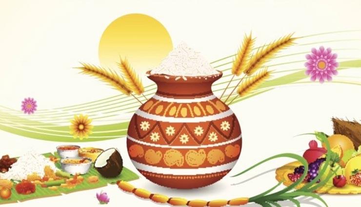 astrology tips,astrology tips in hindi,pongal,pongal celebration,types of pongal ,ज्योतिष टिप्स, ज्योतिष टिप्स हिंदी में, पोंगल, पोंगल महोत्सव, पोंगल के प्रकार