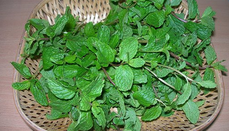 5 Reasons Why Eating Pudina is Beneficial During Summers