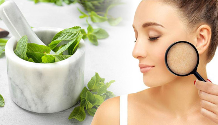 coronavirus,beauty,mint leaves,beauty tips,home remedies,simple beauty tips ,कोरोना वायरस,ब्यूटी