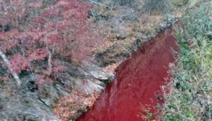 आखिर कहां से आया इस नदी में इतना खून, पानी का पूरा रंग हुआ लाल