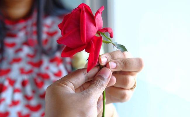 rose day quotes,valentines quotes,valentines 2019 ,वैलेंटाइन 2019, रोज डे 2019, रोज डे शायरी, शायरी, संदेश