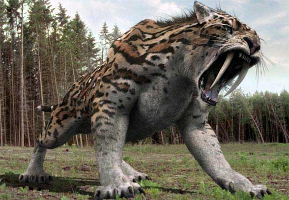 meganeura,arthropleura,hammaerhead salamander,saber toothed tiger,most dangerous animals,weird story