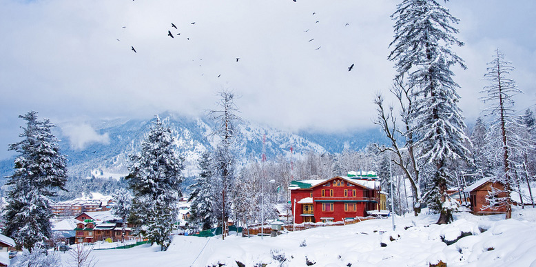snowfall in india,places to visit in india,gulmarg,auli,kalp,tawang,tourist place ,स्नोफॉल, गुलमर्ग, औली, कल्प, तवांग, पर्यटन स्थल