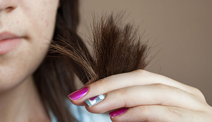 8 Effective Home Remedies To Treat Split Ends