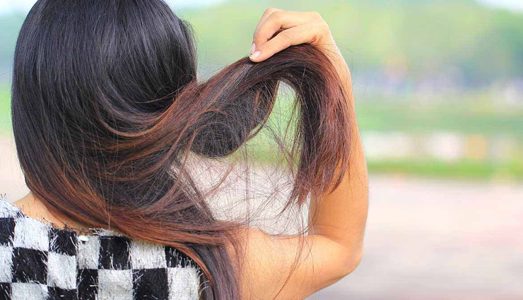 hair packs,home made hair packs,hair packs for split ends,hair care tips