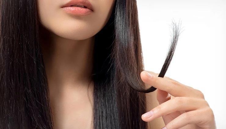 दोमुंहे बालों से छुटकारा दिलाएंगे ये 5 उपाय, जानें और आजमाए