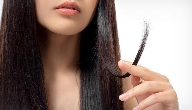 beauty tips,beauty tips in hindi,split hair tips,split hair remedies,home remedies ,ब्यूटी टिप्स, ब्यूटी टिप्स हिंदी में, दोमुंहें बालों से छुटकारा, घरेलू उपाय