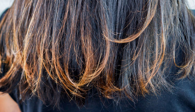 Get Rid of Split Ends With The Help of Coconut Oil