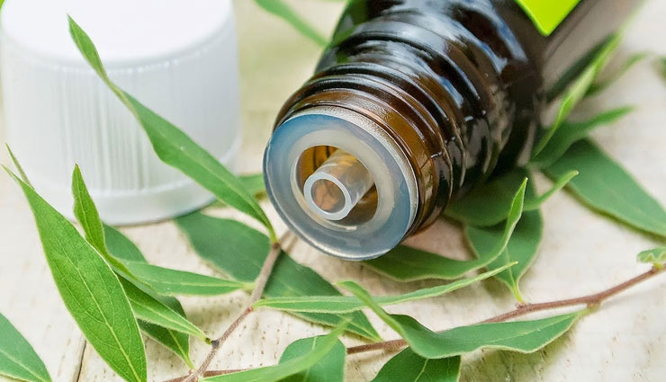 5 Ways To Use Tea Tree Oil For Healthy Hair