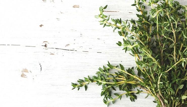 thyme,health benefits of thyme,health benefits,Health tips,fitness tips
