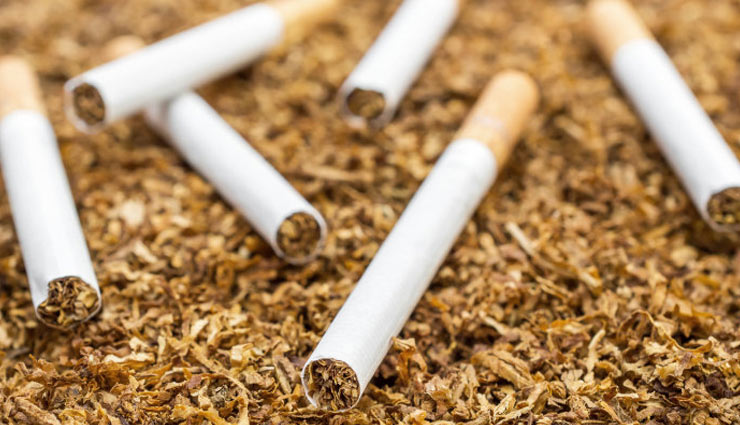 tobacco use in vagina,sexual pleasure,tobacco,libido,cancer,physical relationship,intimate,women health,fitness,Health ,तंबाकू