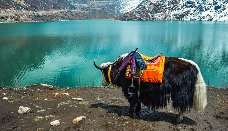 sikkim,gangtok,yuksom,tsomgo lake,pelling,rumtek monastery,holidays,travel