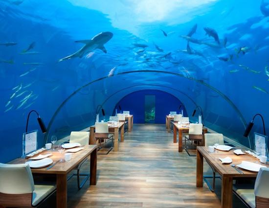 Stay With Sharks in These 5 Underwater Hotels Around The World