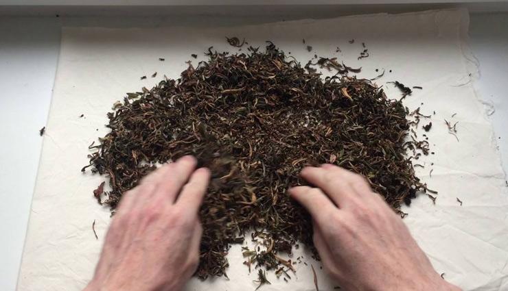 काम में ली गई चाय पत्ती के भी है कई उपयोग, जानकर आप भी रह जाएँगे हैरान