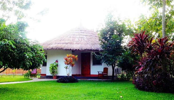 5 Vastu Tips For House Garden