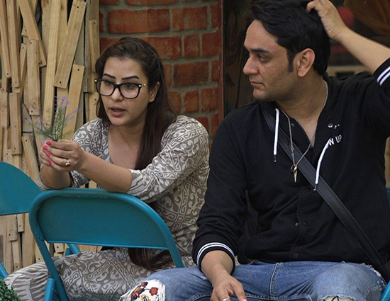 Bigg Boss 11- Vikas To Makes His Love for Shilpa Official
