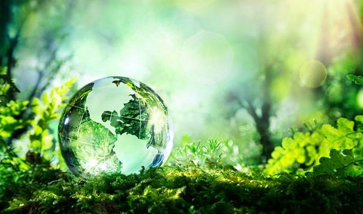 World Environment Day 2020: PM Modi Request People To Save The Planet Earth