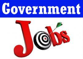 लाखों की सैलेरी वाली सरकारी नौकरी पाने का सुनहरा मौका, आवेदन के लिए क्लिक करें