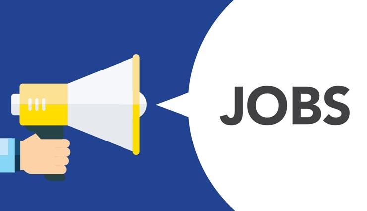 करें ऑनलाइन आवेदन, उठाए सरकारी नौकरी पाने का मौका, क्लिक कर जानें पूरी जानकारी