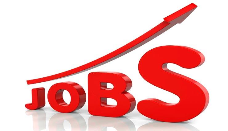 सीधे इंटरव्यू से सरकारी नौकरी पाने का मौका, सैलेरी 56100 रूपये प्रतिमाह, आज आवेदन करने का अंतिम दिन