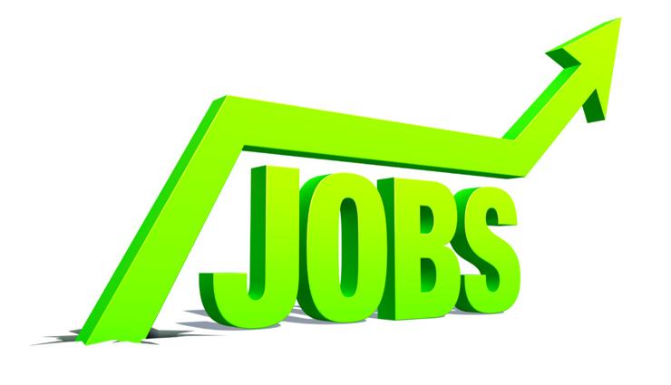 बड़े संस्थान में निकली सरकारी नौकरी, सैलेरी 1,59,100 रूपये प्रतिमाह