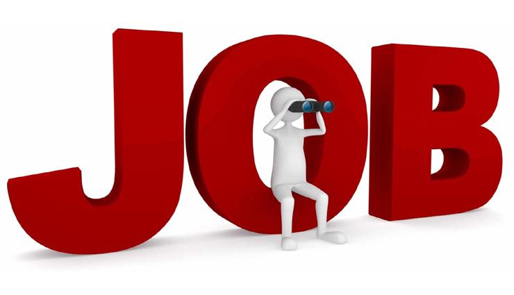 बड़े संस्थान में निकली है बम्पर सरकारी नौकरियाँ, आवेदन के लिए क्लिक करें