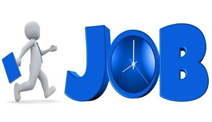2167 पदों पर निकली नौकरियां, आवेदन करने का कोई शुल्क नहीं