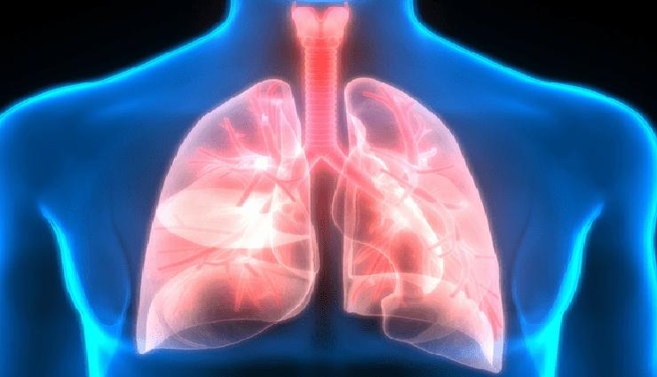 lung,protection,steam,herbs,turmeric ,நுரையீரல், பாதுகாப்பு, நீராவி, மூலிகைகள், மஞ்சள்