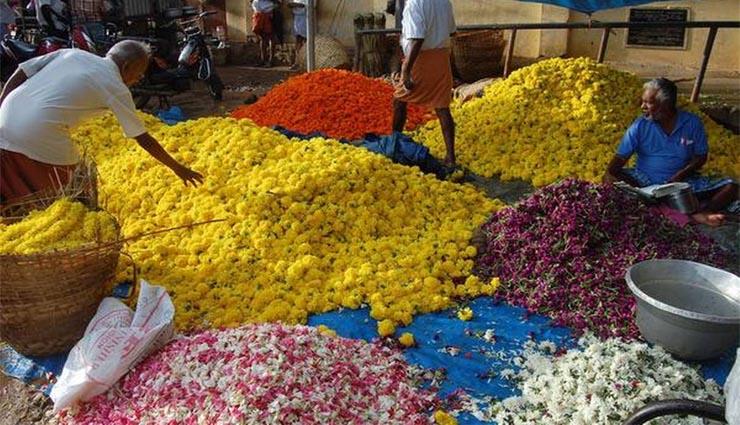 jasmine,cultivation,frost,festive,price ,மல்லிகைப்பூ,சாகுபடி,பனி,பண்டிகை,விலை