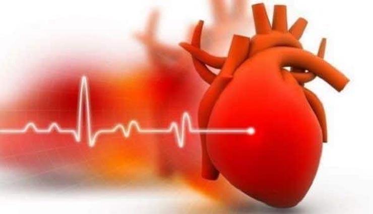 heart disease,basil,gooseberry,figs,health ,இதய நோய்,துளசி,நெல்லிக்கனி,அத்திப் பழம்,ஆரோக்கியம்