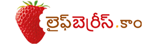 lifeberrys.com telugu తెలుగు